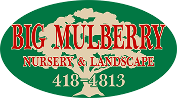 Big Mulberry Nursery & Landscape